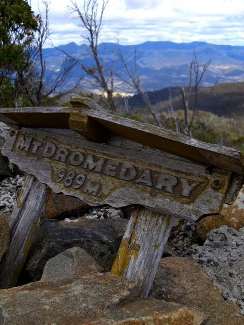 Plaque on Summit of Mount Dromedary