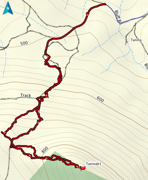 Track to Tanina Peak