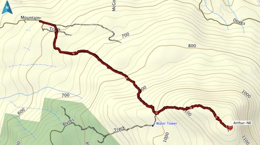Mt Arthur GPS track
