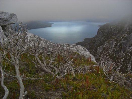 The next morning, glow on Lake Pedder