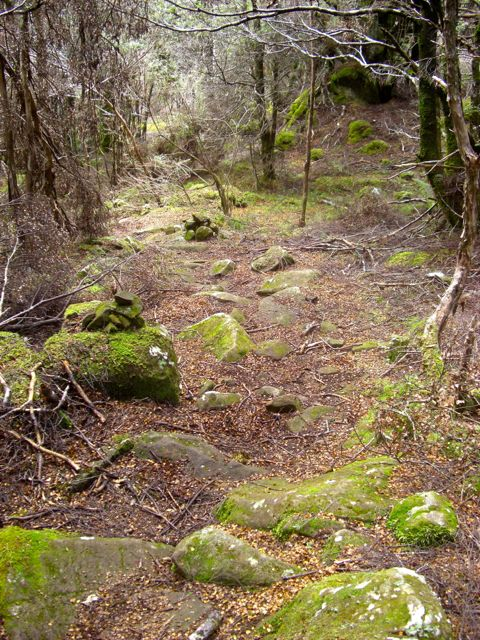 Track and moss covered cairns