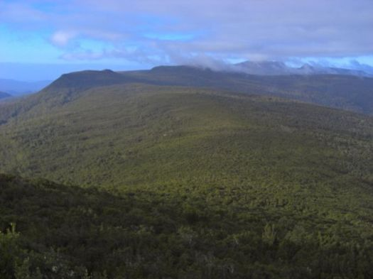 Just past Snowy, looking towards Esperance, the scrubby part lies ahead