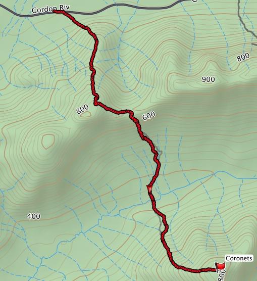 Coronets GPS Track
