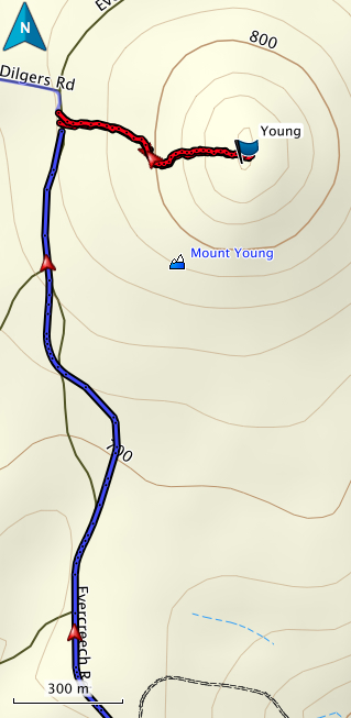 Mt Young GPS route