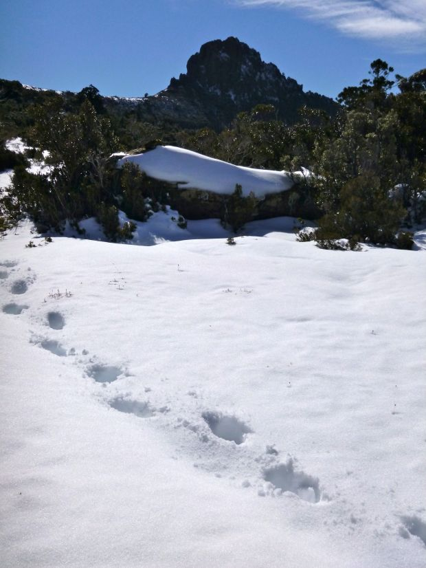 Getting there, my footprints in snow below Lots Wife