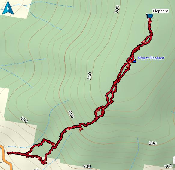 Mt Elephant GPS track