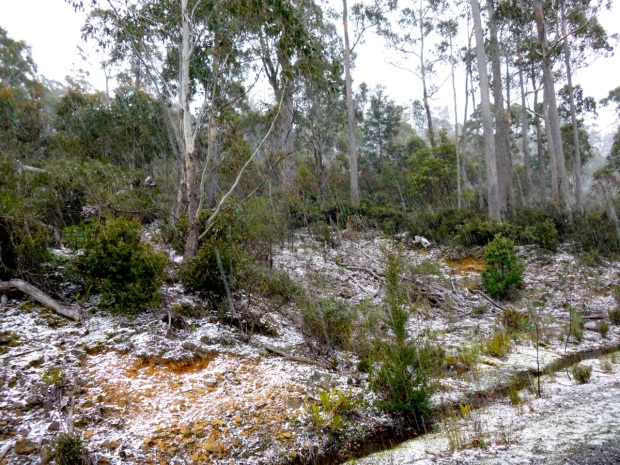 Just a bit of snow/hail.. an idea of the open scrub we headed up through to get to Byatts Razorback