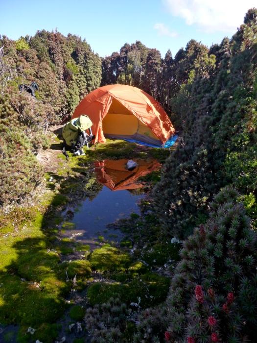 My favourite campsite!