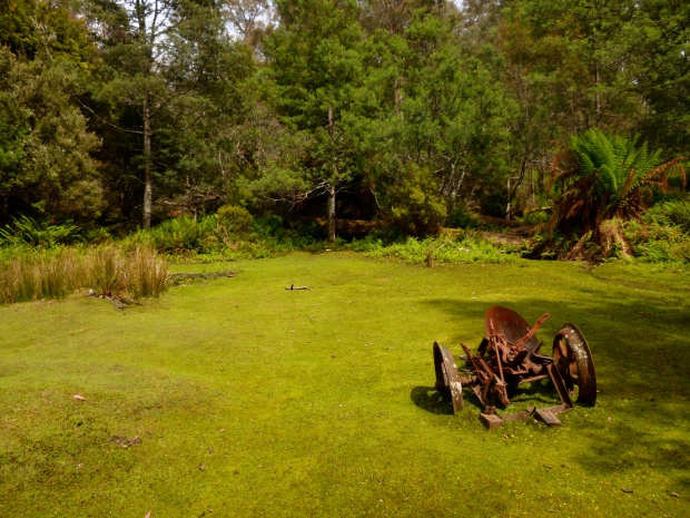 Gordonvale is reclaimed by nature.. a good place for a bit of an exploration