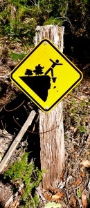 A sign at the beginning.. do not climb? Climb? Dance? Or the latest FB suggestion, beware of killer three-legged koalas?!