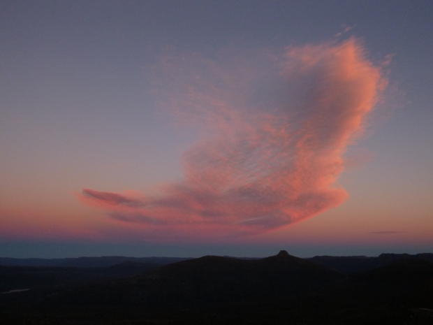 The clouds become alive, a colourful dove casts peace over the world