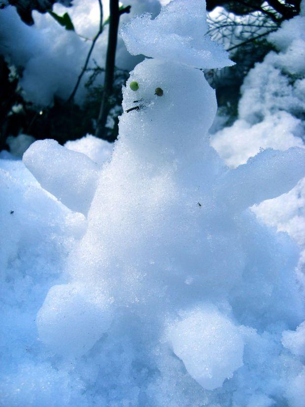 Mr Snowman :)