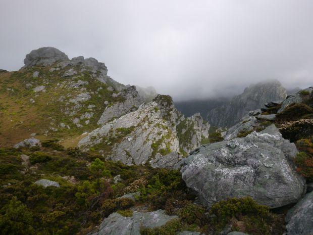 Mist in the morning.. lovely sense of mystery