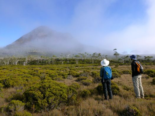 Shortly after heading off on our day walk, the mist clears quite rapidly, and we pause to take in the views