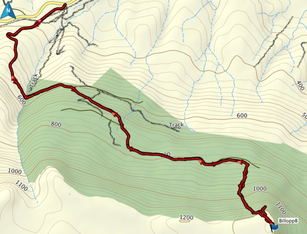 Billopp Bluff GPS route
