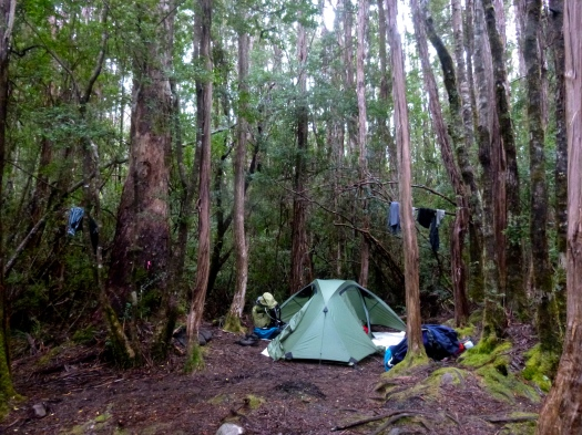 Camp at Cutting Camp.. watch out for the mozzies!