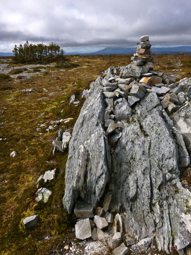 Campbell Summit cairn, and 'lonely huddle' of pines :)