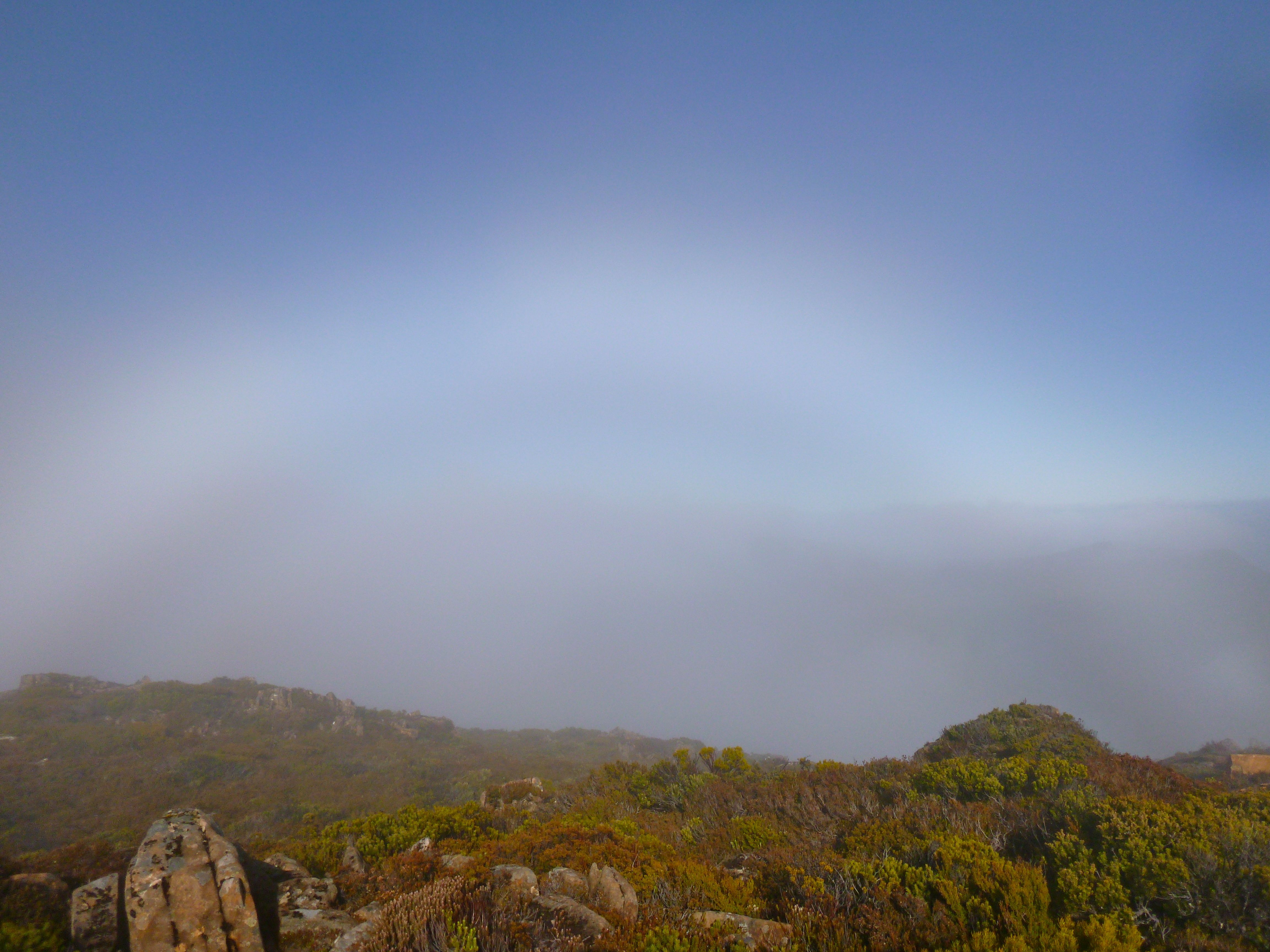 And from the summit of Pitt, I'm treated to the fogbow (thanks wikipedia, I never knew there was such a thing!)