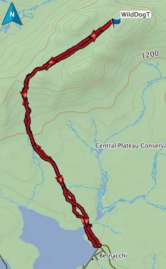 Wild Dog Tier GPS route