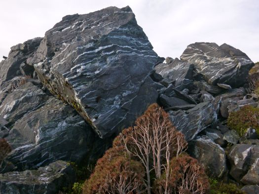 Different rock.