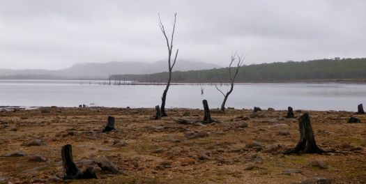 Walking the lake shore.. a little bleak here..