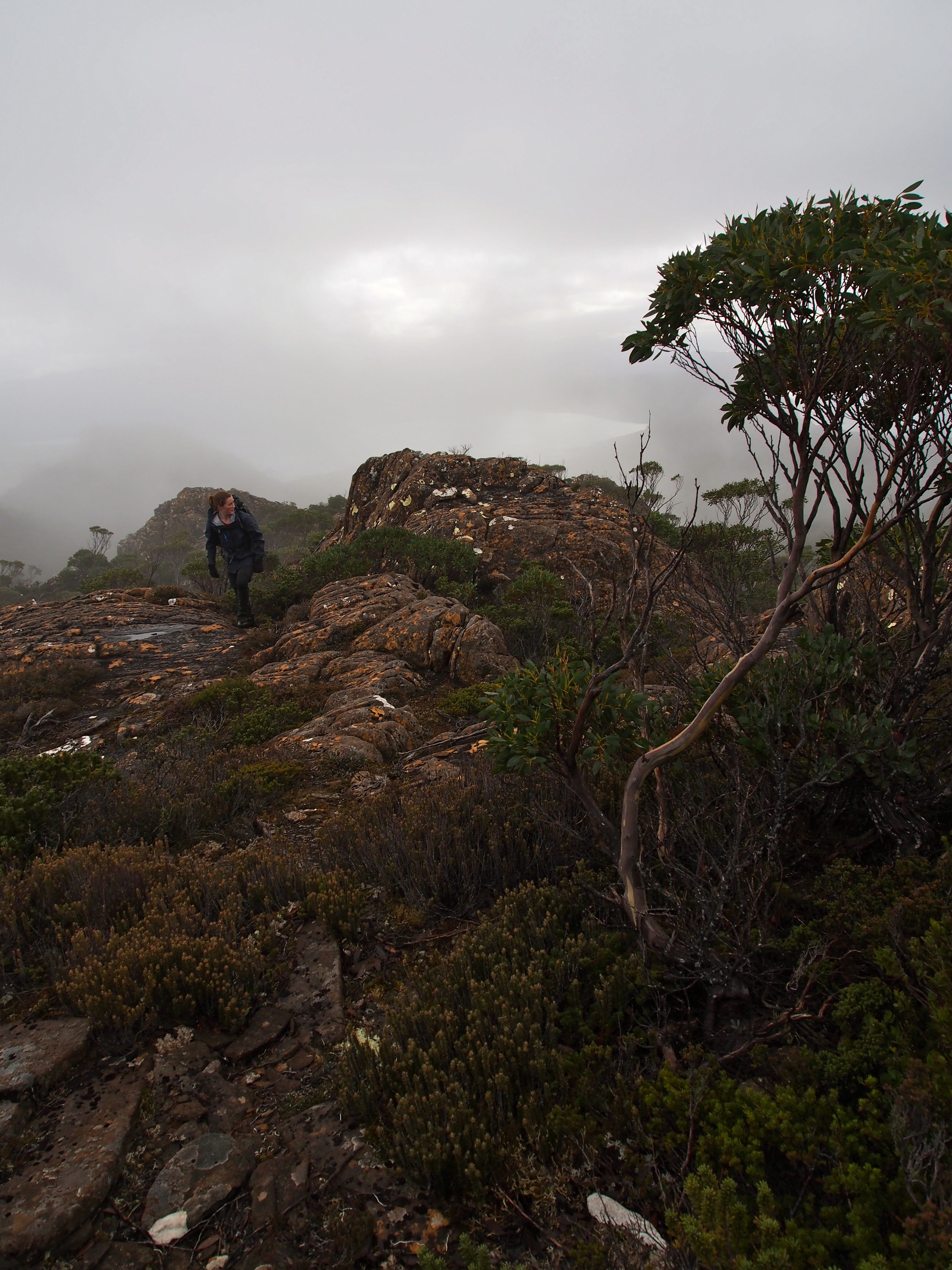 Heading towards the summit.. brighter patches of light amongst the white fog hinting that there's something out there..