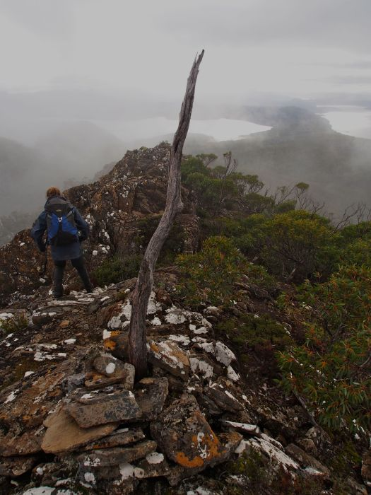 The summit of Hobhouse.. and a little bit of view.. it was pretty exciting to have even just this much!