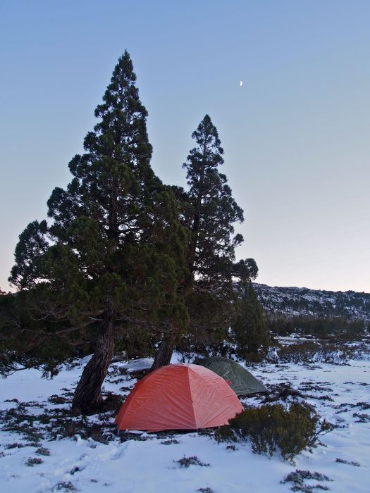 Home for two nights, under the moon (and later, stars).