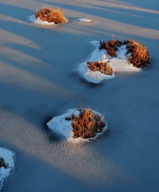Little islands in early morning light on frozen tarn