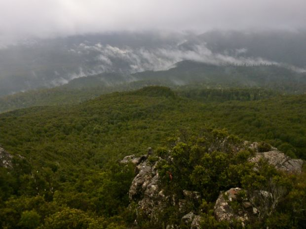 Misty cloud and green valleys.. about the extent of our view