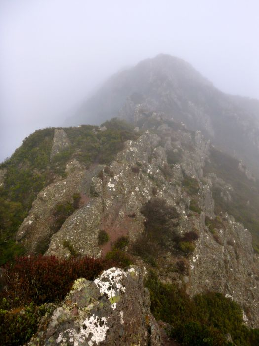 Then out of the forest and onto the ridge line.. lots of fun running across this! But oh the number of false summits in the mist, when you're racing time!!