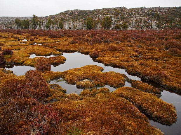 On the plateau.. beautiful colours.