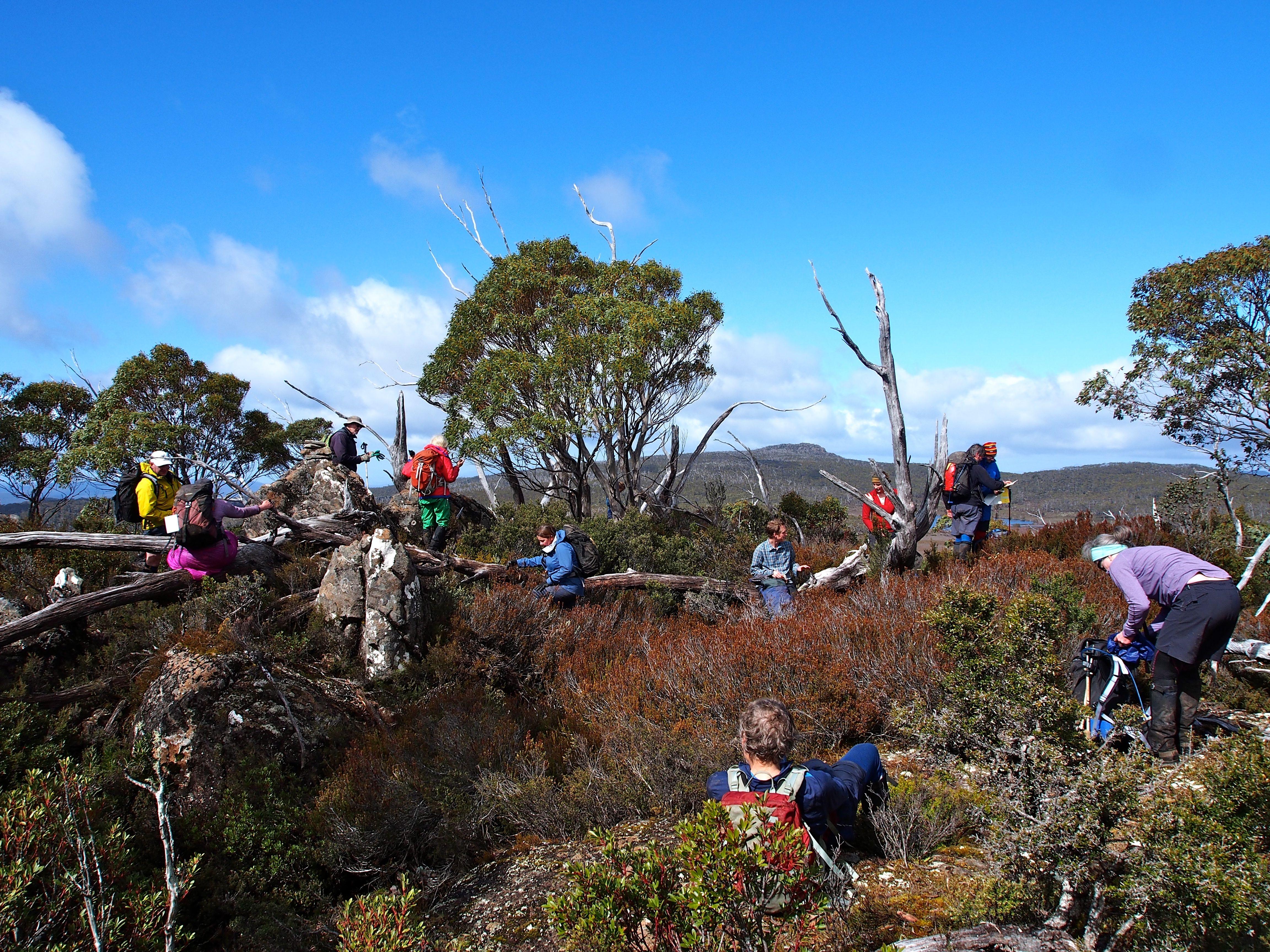 Our group on D'Arcys summit.