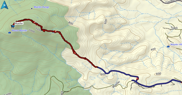 Mount Mueller GPS route