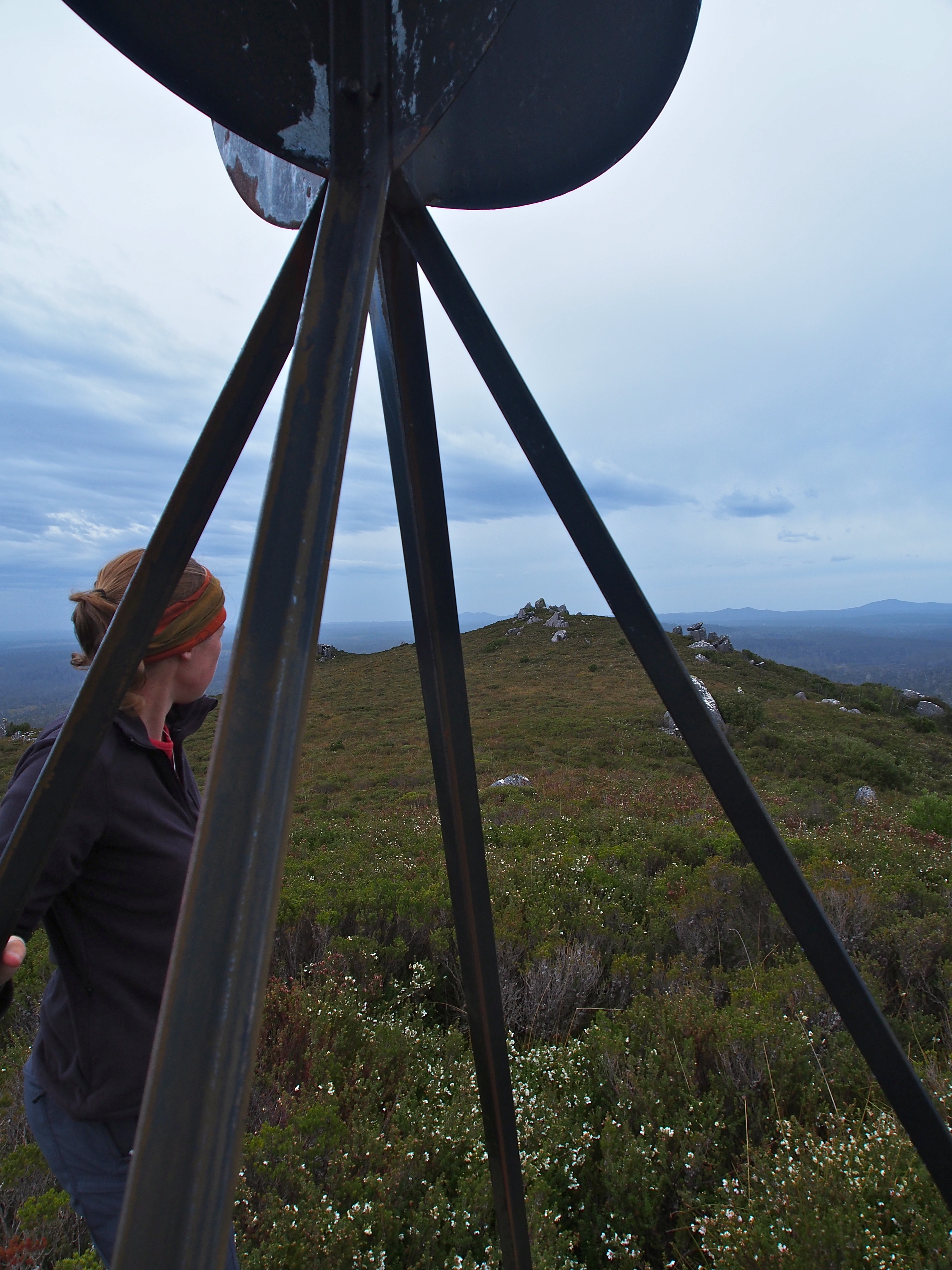 And from the trig to the summit