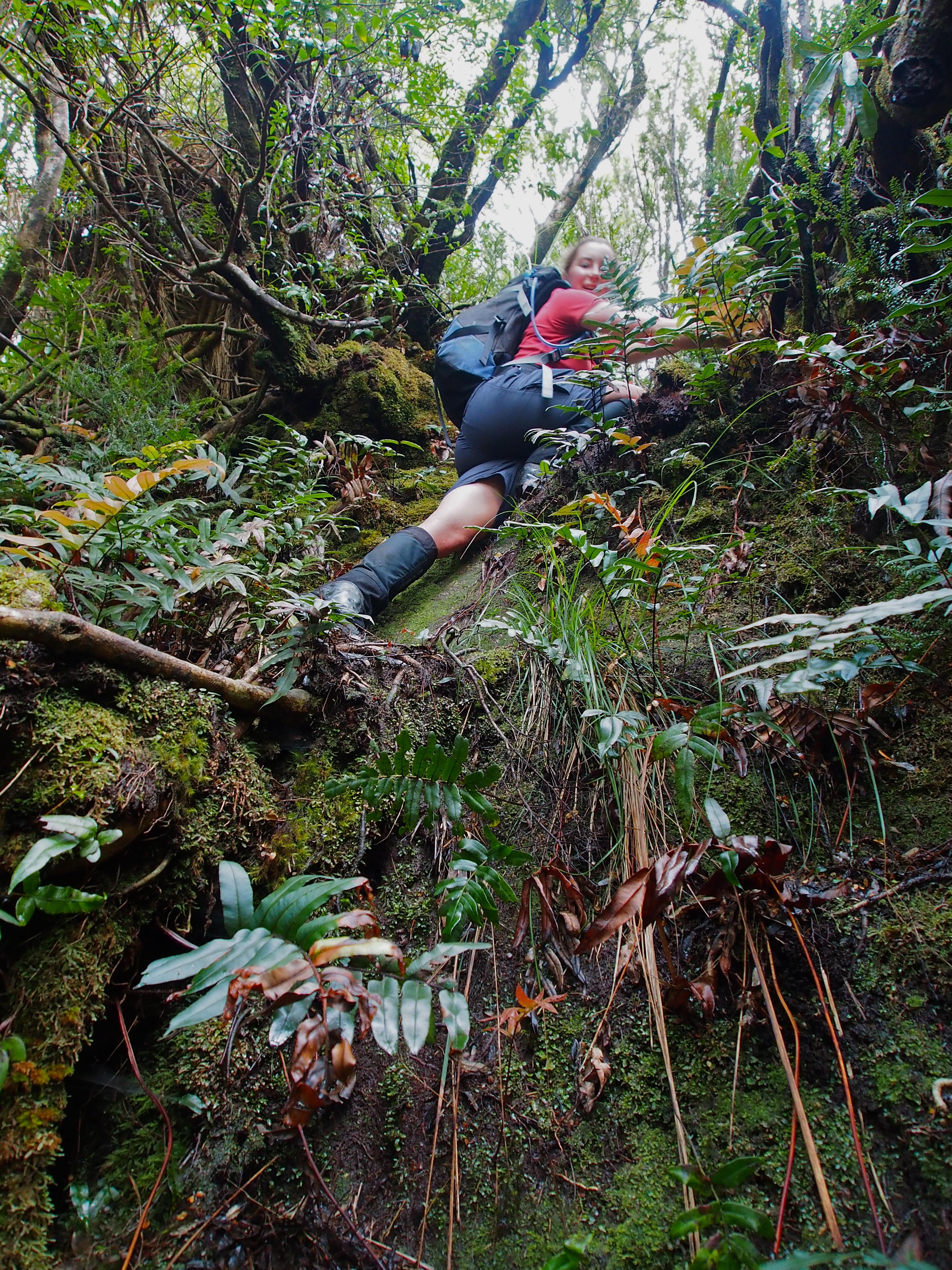 Some climby fun