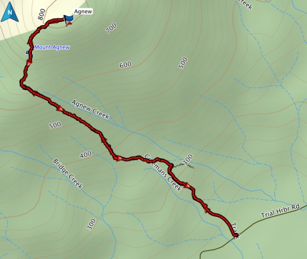 Mount Agnew GPS route