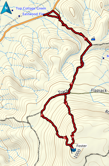 Mount Foster GPS route