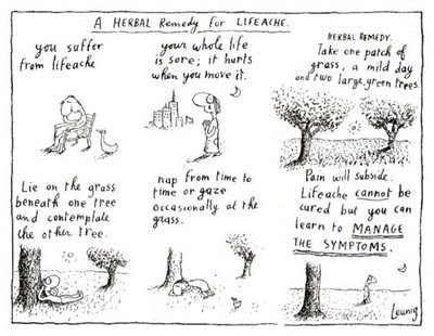 Leunig's Herbal Remedy for Lifeache