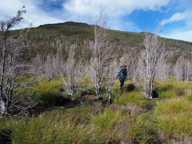 Urszula leaves the scrub, and Othrys, behind