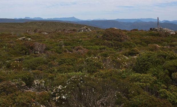 Recondite Knob summit and the Eldon range