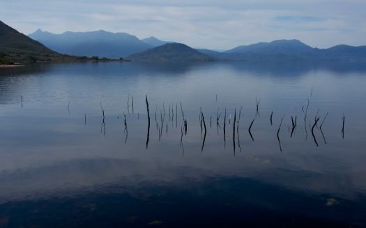 Hmmmm… not bad. I'm not old enough to have known the original Lake Pedder, but despite this one being fake, I do find it rather lovely all the same.