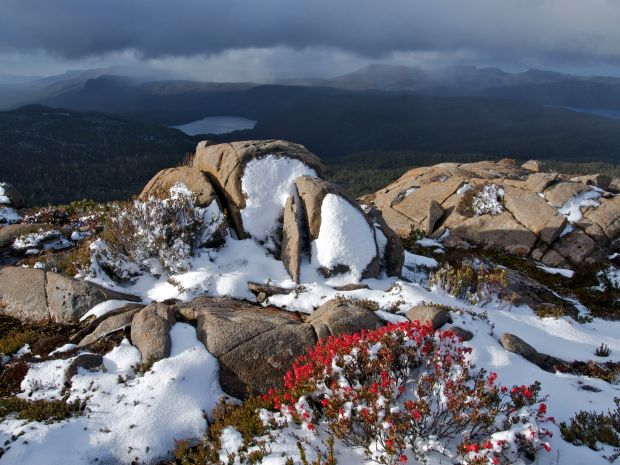 On the ridge, bright happy flowers, soft white snow against hard rock, and moody clouds make for a beautiful scene
