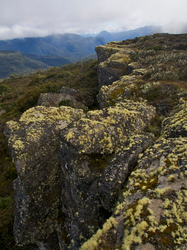 After a longer than necessary scrub bash, we found ourselves on Coal Hill, delighted by the lichen covering the rocks! It's a funny thing, a rocky shelf that gives the impression that it was once a proper mountain, but someone had come along and lopped the top off.