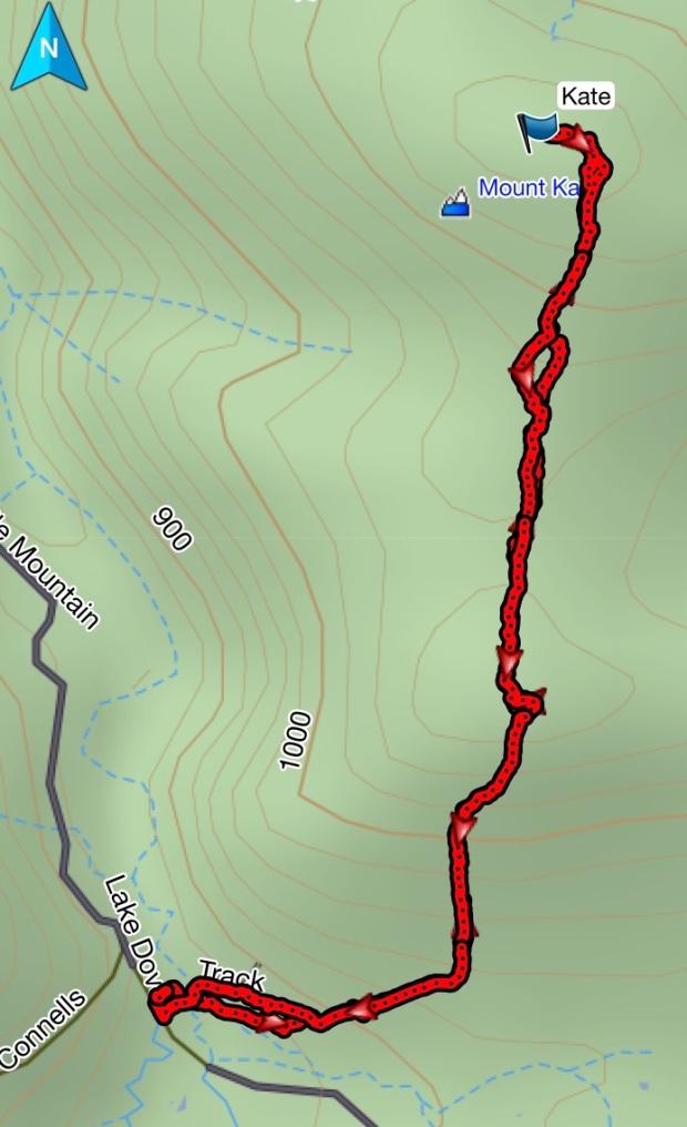Mount Kate GPS route