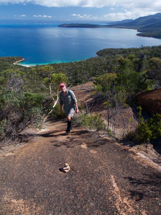 Climbing Bear/Bare Hill