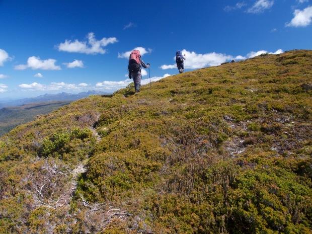 Beautiful open walking - we'll be back for the little Eldons