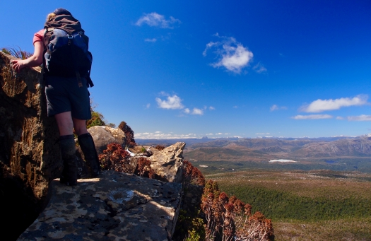 Scrambling up the rock, the mountains of the Overland Track keep distracting us